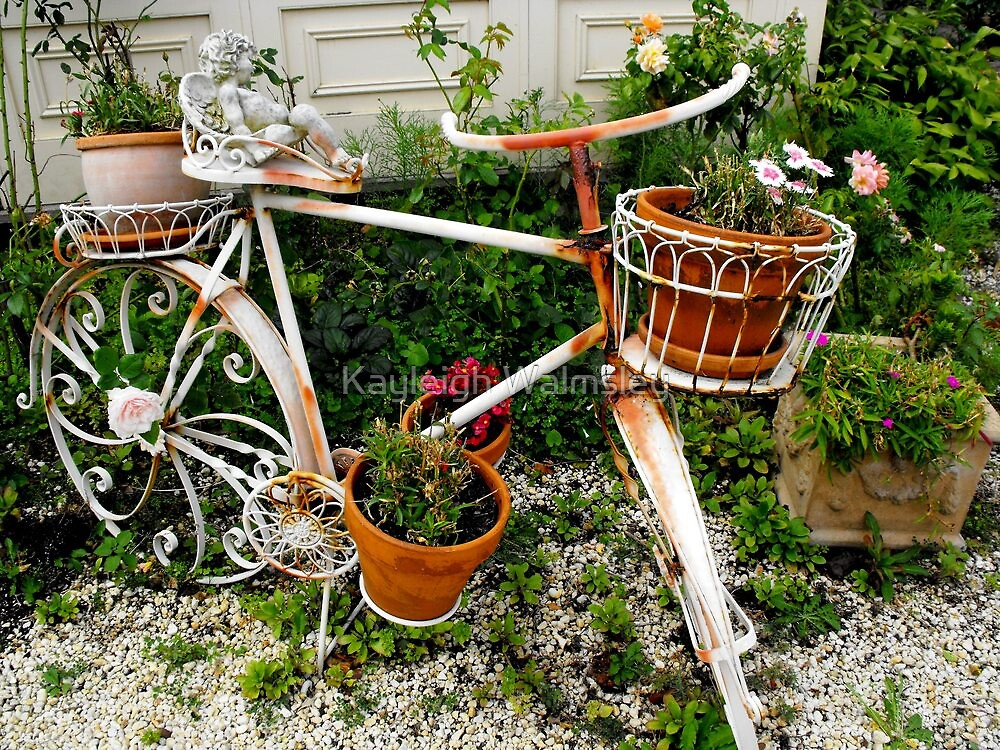 Bike at the Victoria Bed and Breakfast by Kayleigh Walmsley