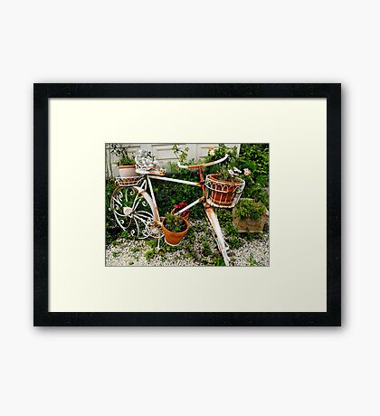 Bike at the Victoria Bed and Breakfast Framed Print