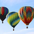 Three flying together by Karol Franks