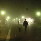 Fog by annalisa bianchetti