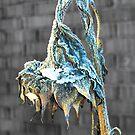 frozen sunflower by Barry W  King