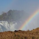 Victoria Falls, Africa 2014 by maureenclark