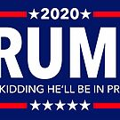 tRUMP 2020 - Just kidding he'll be in prison by Thelittlelord
