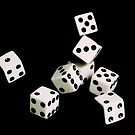 Playing With Dice by Ray4cam