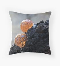 Manna gum tree Throw Pillow