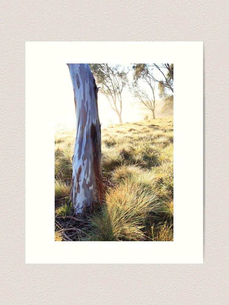 Alternate view of Misty Gumtree, Kosciusko National Park, Australia Art Print