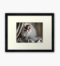 Introducing George, AKA Man About Town Framed Print