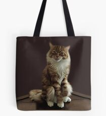 HUMOROUS CAT PICTURE ..WHAT DO U MEAN I HAVE ATTITUDE? -- PILLOWS--TOTE BAGS--ECT. Tote Bag