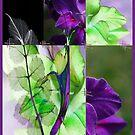 Thinking spring by Susan Ringler