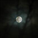 Last Winter Moon by OntheroadImage