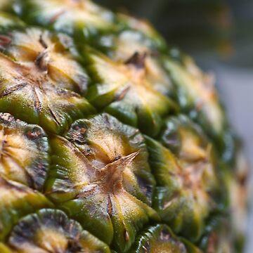 Pineapple Earth by bubbleblue