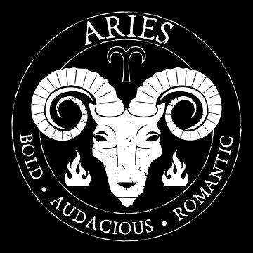 Aries Zodiac Birthday Star Sign Zodiac Gift by oberdoofus