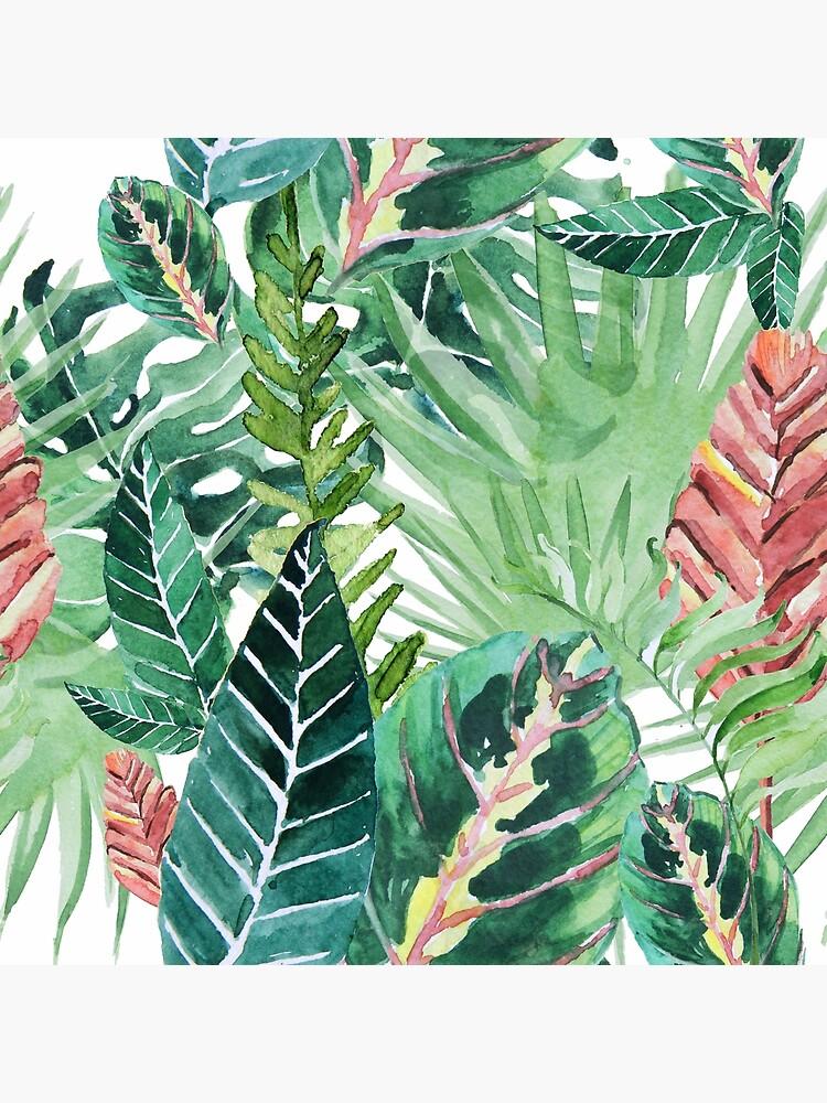 Havanna-Dschungel von galeswitzer