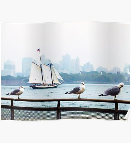 Skyline with Seagulls Poster