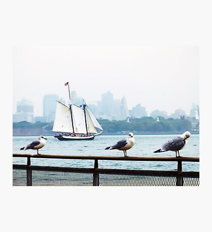 Skyline with Seagulls Photographic Print