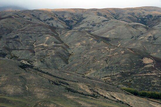 Barren hills of Otago by nymphalid