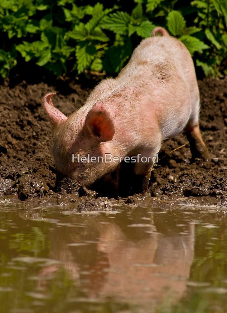 Mud, mud, glorious mud... by HelenBeresford