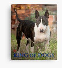 King of Dogs Metal Print