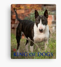 King of Dogs Canvas Print
