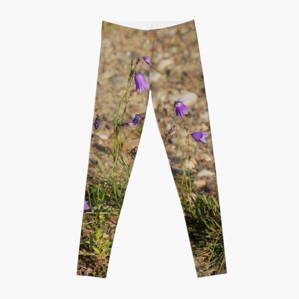 #flower #nature #outdoors #grass #field garden leaf season summer petal Leggings