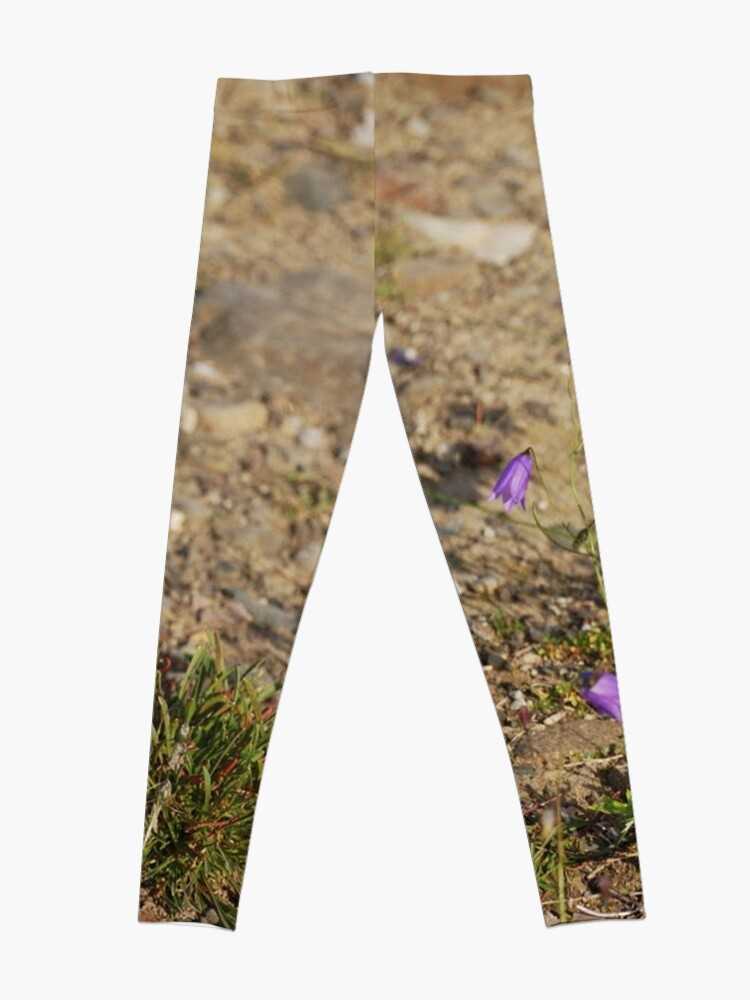 Alternate view of #flower #nature #outdoors #grass #field garden leaf season summer petal Leggings