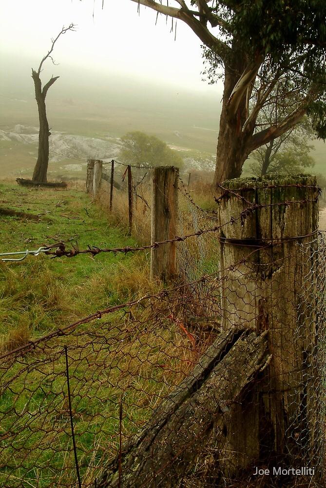 Wet Damp Cowbaw Morning, Macendon Ranges by Joe Mortelliti
