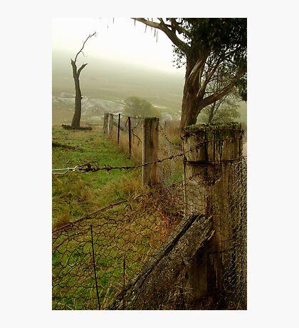 Wet Damp Cowbaw Morning, Macendon Ranges Photographic Print