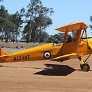 DH37 Tiger Moth by Stephen Horton