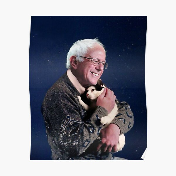 Bernie with Cat Poster
