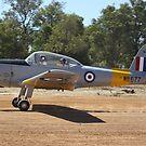 DHC-1C Chipmunk by Stephen Horton