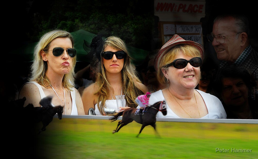 A Day at the Races by Peter Hammer