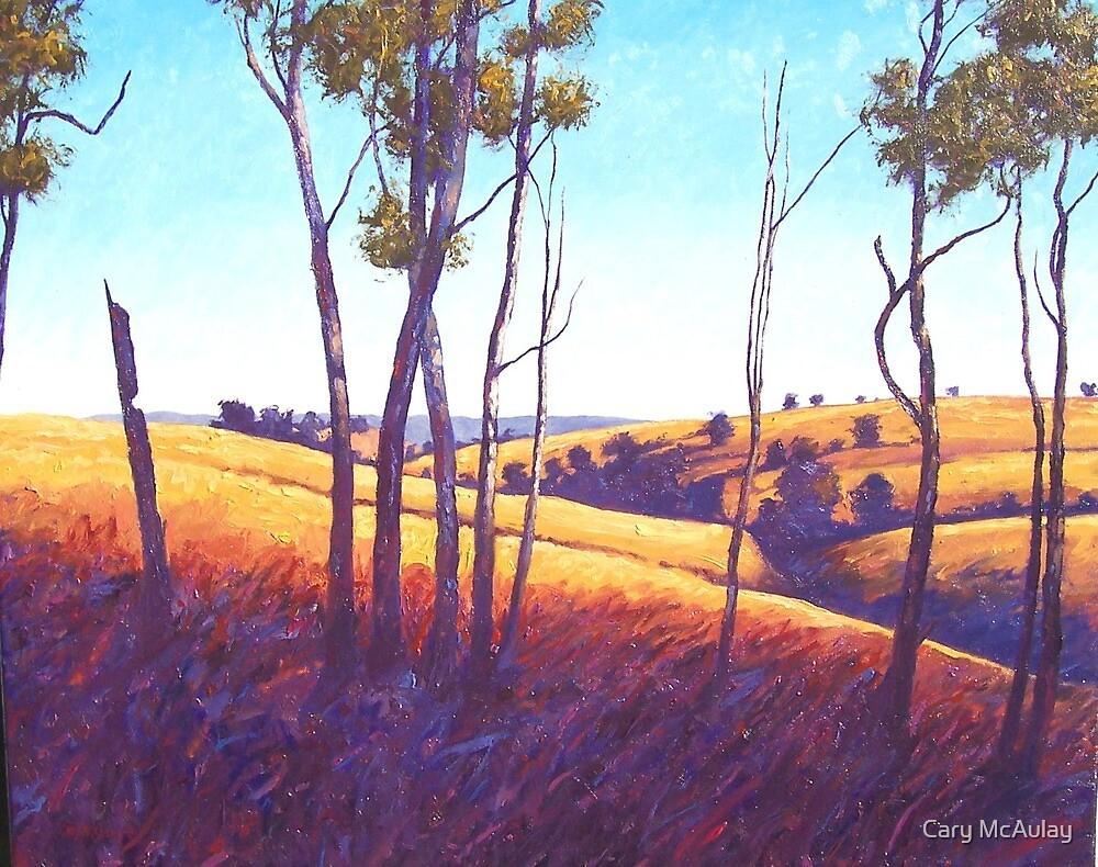 Near Nanango by Cary McAulay