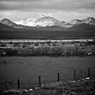 Snow In The Desert - Enroute to Alpine Texas © 2010 *Featured by Jack McCabe