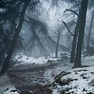 Mist and snow by Brett Trafford