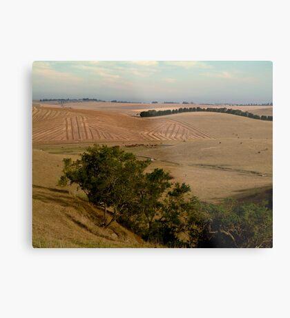 Barrabool Hills Farmlands Metal Print