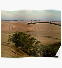 Barrabool Hills Farmlands Poster