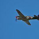 Kittyhawk fighter, WW2 by bazcelt