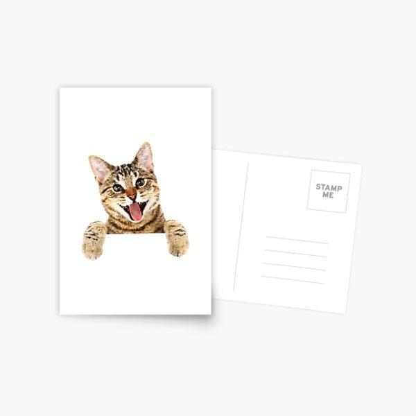 ★ No Grumpy Cats here! Postcard