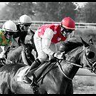 Race Series #2 by Jo McGowan