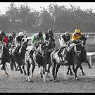 Race Series #5 by Jo McGowan