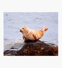 Seal Rock Photographic Print