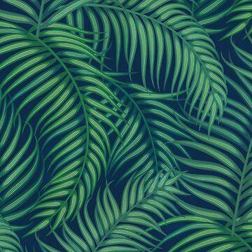 Night tropical palm leaves by CatyArte