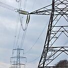 Power Lines by Paul Morley