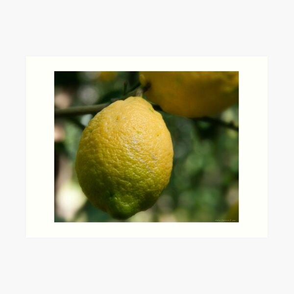 Uno sfumato al  limone Art Print
