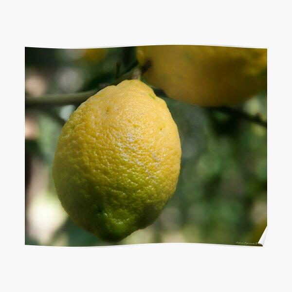 Uno sfumato al  limone Poster