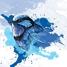 The Fairy Wren by AshleyCapes