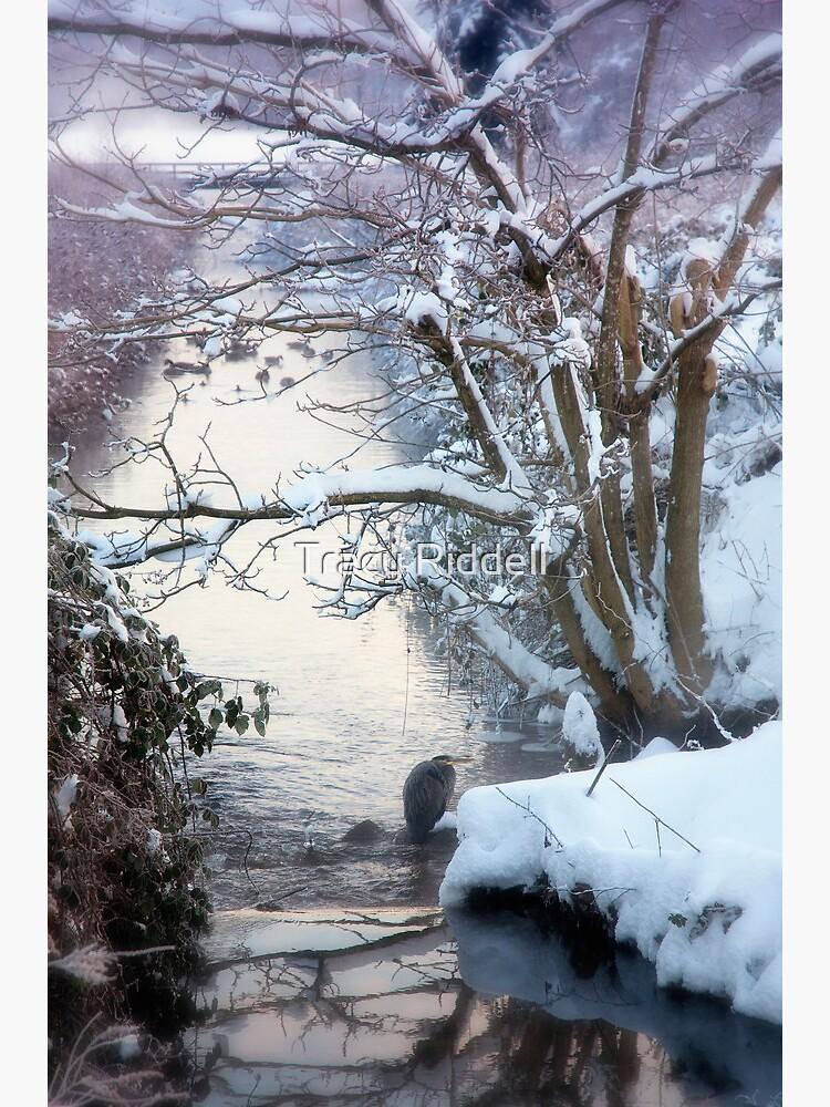 Heron Winter Scene by taos