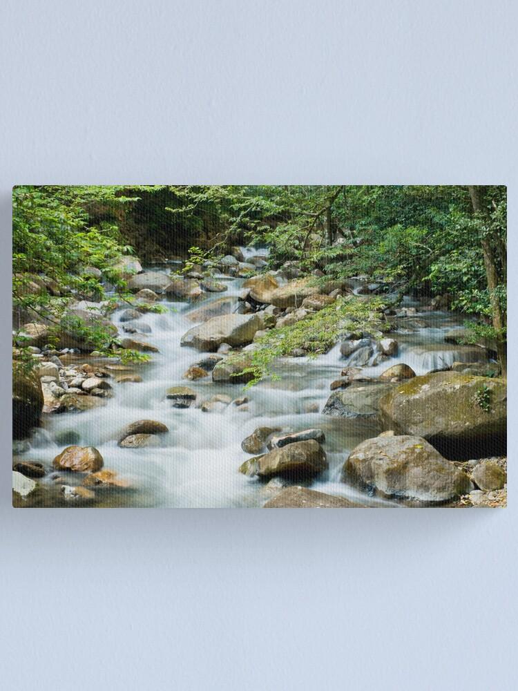 Alternate view of River in Ricon de la Vieja Canvas Print