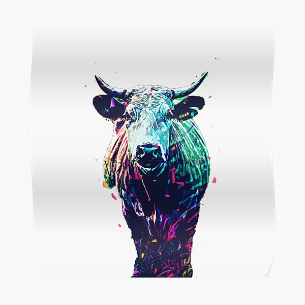beautiful colorful cute cow  Poster