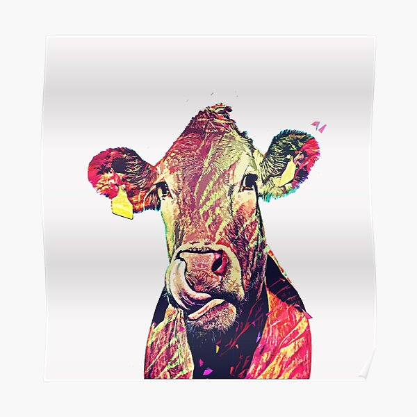 funny cute female cow  Poster